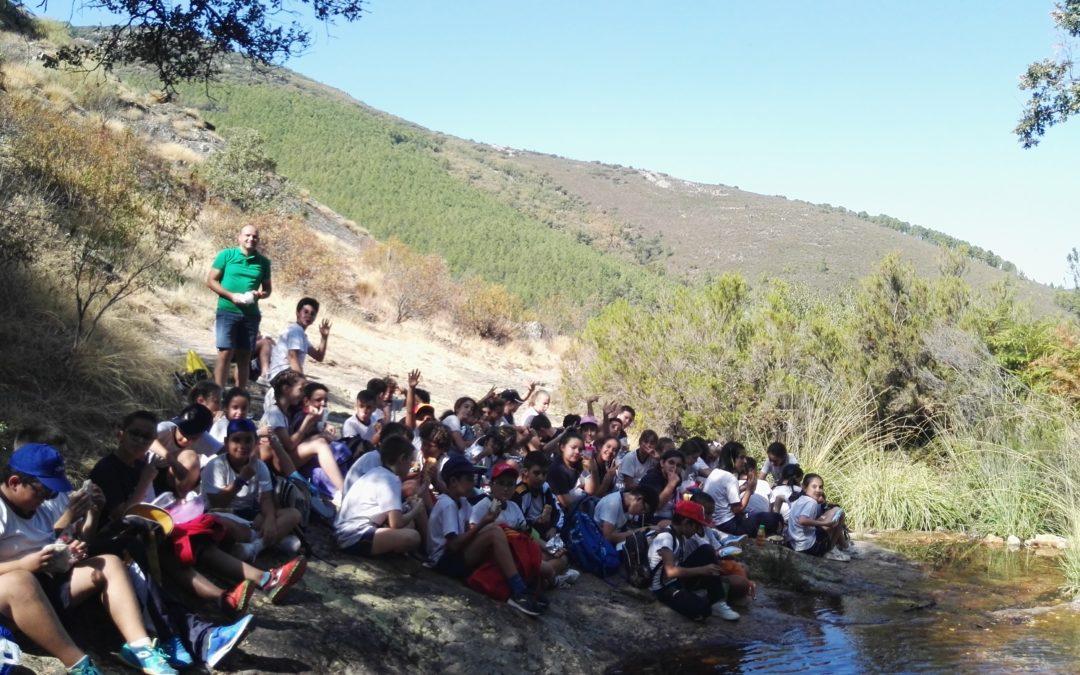 5º y 6º de Primaria: excursión a Robledo del Mazo.